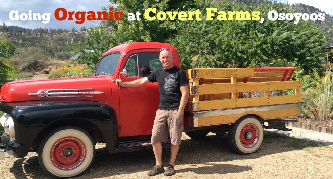 Covert Farms Osoyoos