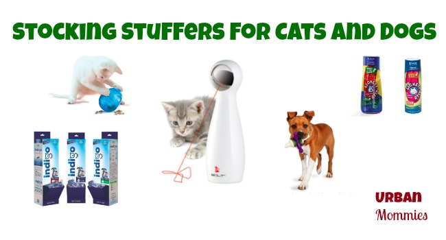 Stocking Stuffers for Cats and Dogs