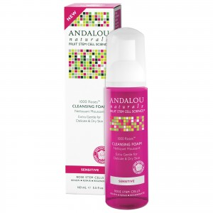 Andalou Cleanser