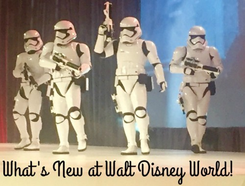 Whats New at Walt Disney World