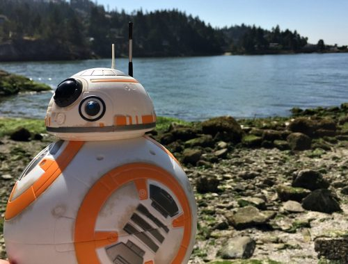 BB8 at the Ocean