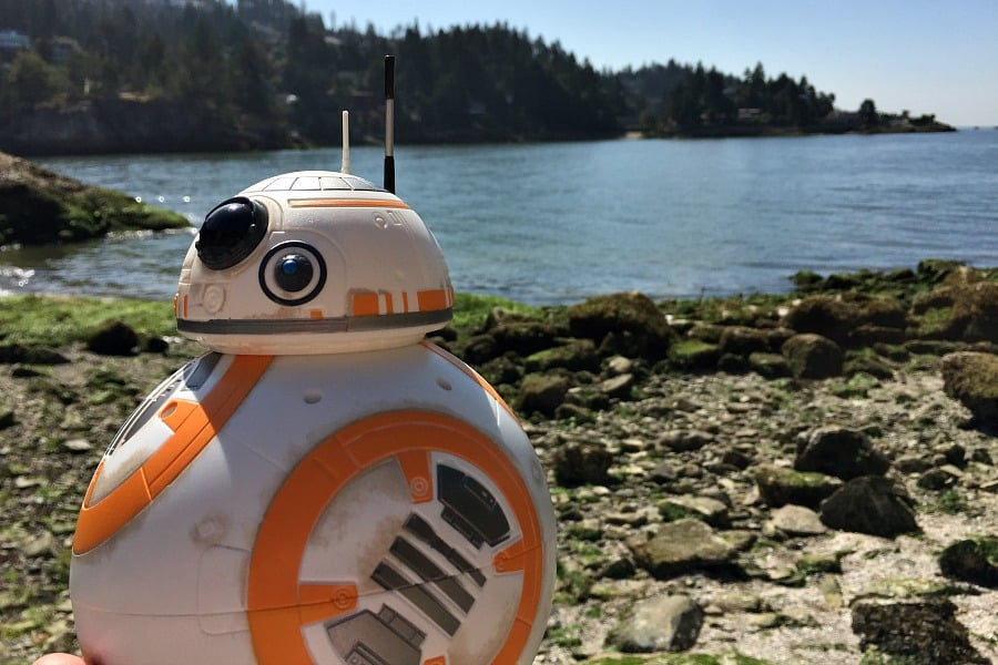 BB8 at the Ocean