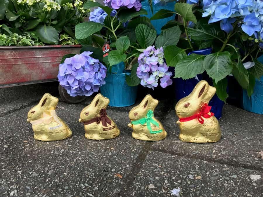 lindt-gold-bunny